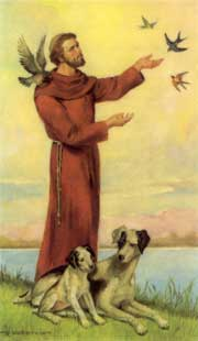 Catholic Brother of the Poor of St. Francis of Assisi
